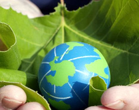 Why do we celebrate environment day