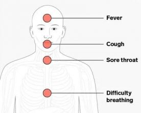 Why do some people with Coronavirus don't get symptoms of while others do